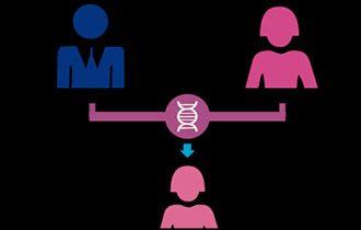 遗传性乳腺癌基因检测与风险评估
